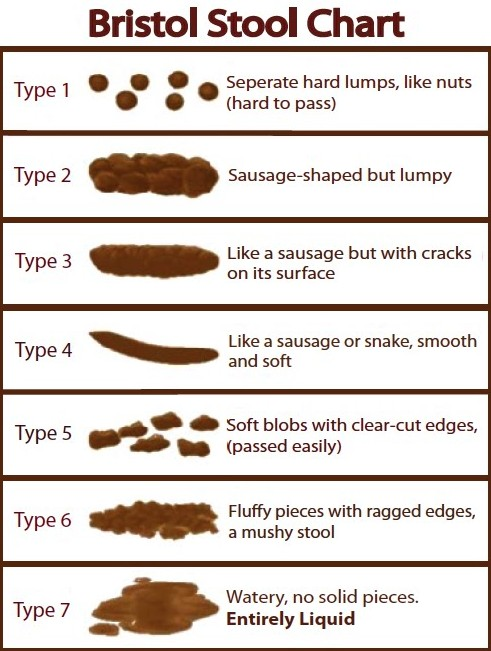 Stool Shape Meanings Types Of Poop Chart Pictures To Pin