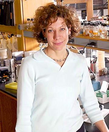 Quorum Sensing and Bonnie Bassler