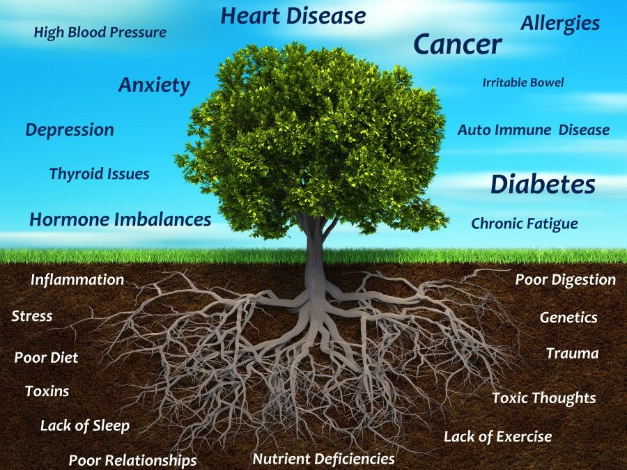 Functional medicine doctor Orange CA 92866 Marcus Ettinger