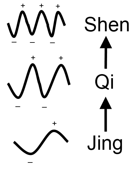 The Frequency of Jing, Qi, Shen